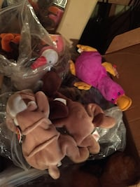 Beanie babies about 2 of them   Bixby, 74008