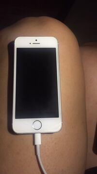Unlocked iPhone 5S 16G  Barrie, L4N 3A8