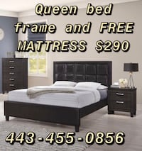 Queen bed frame LEATHER and FREE MATTRESS