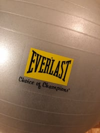 Everlast sports ball