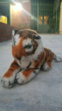 brown and white tiger plush toy Fullerton, 92833