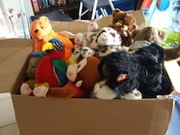 Big box of beanies (small & large) &build a bears Elsmere, 41018