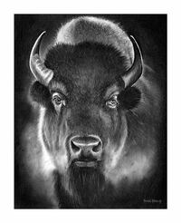 Bison charcoal drawing  Beaumont, T4X 1C6