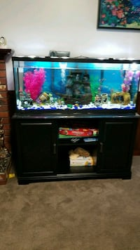 55 gallon and stand almost new
