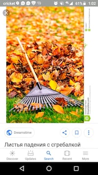 Will rake your lawn.  Machesney Park