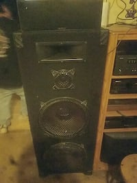 Pro Studio two 18 inch subs with horn