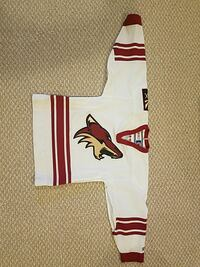 Phoenix coyotes jersey. CCM. Youth small Winnipeg, R2G 0V6