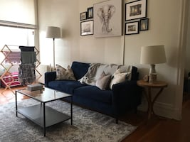 Navy Velour Couch