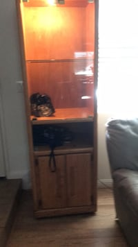 Lighted curio cabinet (there are 2@$40 each