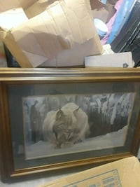 Snow Lepard/ Wood & Glass Frame, Like New!! Knoxville, 37917