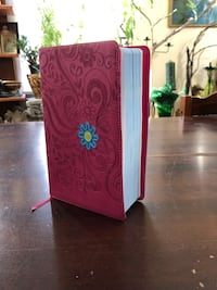 Pink leather bound youth quest study bible Edmonton, T5B 2E6