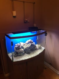 Bow front fish tank everything you need to start  Eastpointe, 48021