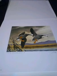 1972 FEDERAL 2ND EDITION DUCK PRINT Greeley, 80634