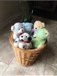 Selling teddy bears with the basket for $10 Raleigh, 27609