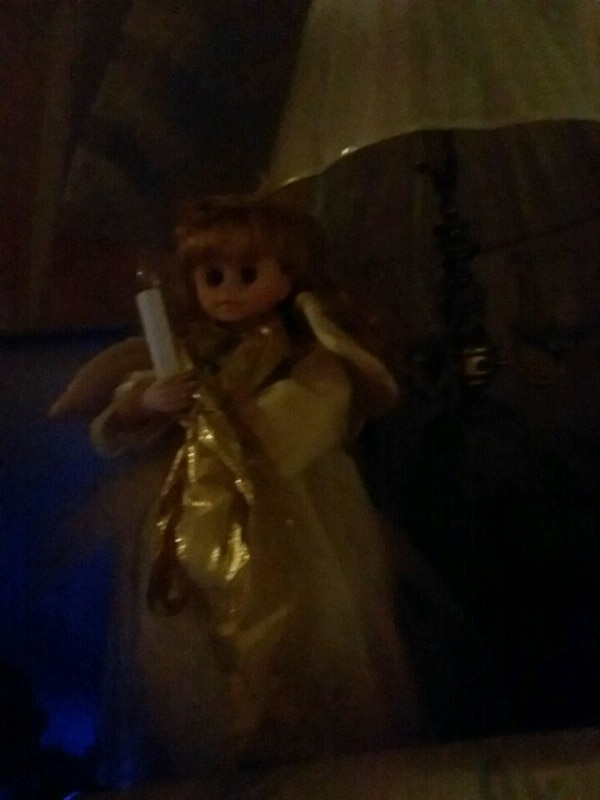 brown haired female doll in box