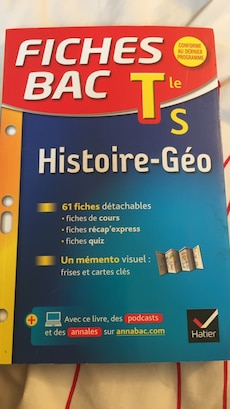 Fiches Bac T les Histoire-Geo book