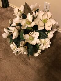 Floral arrangement-magnolias in a wicker basket. 20 inches tall