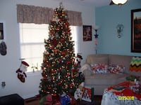 CHRISTMAS TREE, $20.00, 7 FOOT, WITH WHITE LIGHTS Martinsburg