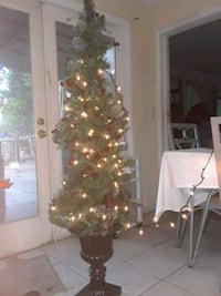 green and white Christmas tree Lauderhill, 33313