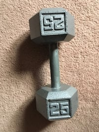 gray and black fixed weight dumbbell Hamilton, L8S 4L8