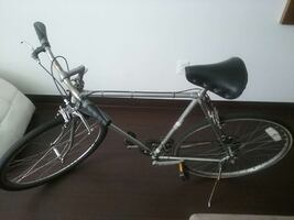 Japanese Bridgestone bicycle frame, rare!