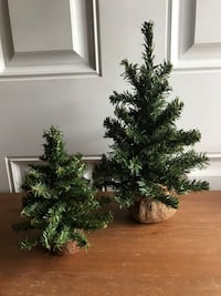 (2) Smaller Decor Christmas Trees Hagerstown, 21742