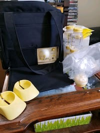 Medela Double Electric Pump in Tote Toronto, M5M 1S7