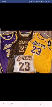 Jersey LeBron James various colors  Annandale, 22003