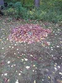 Fall Clean-up Lapeer