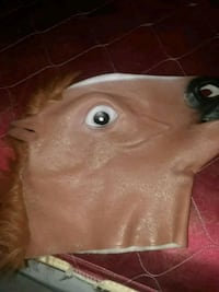 brown and white horse mask Grand Rapids, 49503