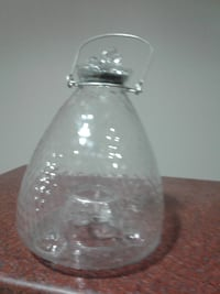 Glass wasp / bee trap Pickering