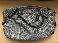 Zebra coach bag Raleigh, 27607