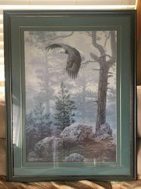Shrouded Forest Bald Eagle by Daniel Smith Cambridge, N1S 3A7