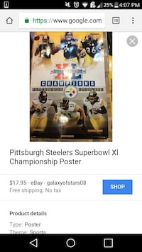 Pittsburgh Steelers superbowl X championship poste Martinsburg
