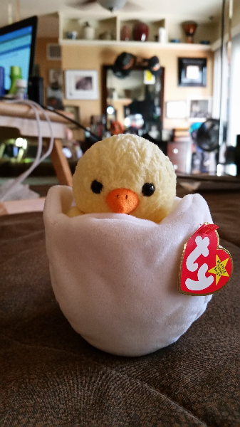 white and yellow Chick Ty beanie baby Phoenix, AZ, USA