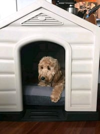 Dog house for sale Mississauga, L5W