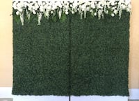 Booxwood/grass wall backdrop for rent