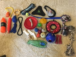 Dog Toy Huge Lot