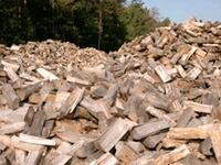 Firewood for sale Brampton