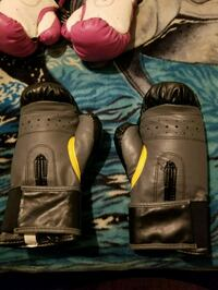 Brand new boxing gloves Langley, V2Y 1W8