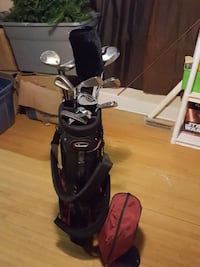 stainless steel golf club set in bag