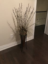 Decorative plant