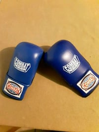 Combat sports international boxing gloves