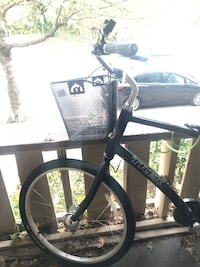 Black Cruiser Trek Bicycle