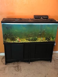 black framed clear glass fish tank The Acreage, 33470