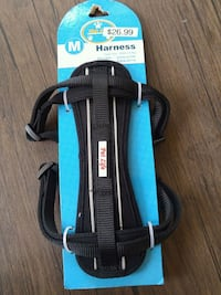 Dog Walking Harness Toronto, M5B 2P6