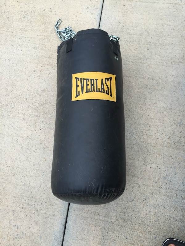 50 Lb Everlast Punching Bag With Gloves