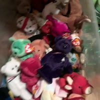 Beanie Baby (all originals) collection