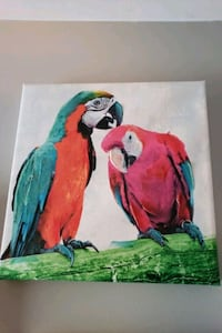 red, green, and blue bird painting Bristow, 20136