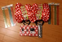 Minnie Mouse Party supplies Toronto, M5A 1Z8